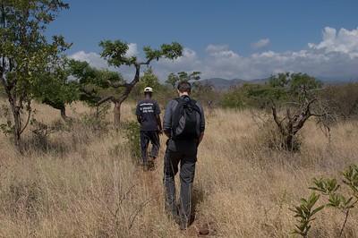 Walking safari at Lake Chala