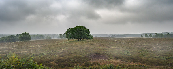 Uitzicht vanaf Uitkijkpunt Valenburg