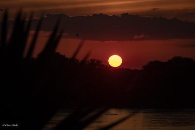 Sunset at Selous Jimbiza Camp 3