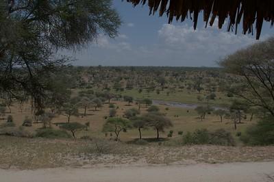 Tarangire river, view from our tent at Tarangire Safari Lodge