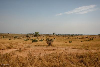 Landscape of Murchison Falls NP