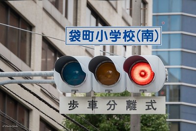 "Writing direction in Japan is traditionally from right to left. So the traffic lights also work ""wrong""."