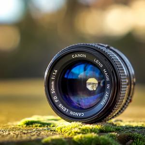 Canon nFD 50mm ƒ/1.4 seen by Samyang FE 50mm ƒ/1.4 AF