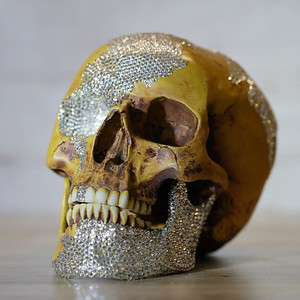 Skull with Swaroksky crystals
