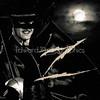 Guy Williams Tribute - Disney's Zorro