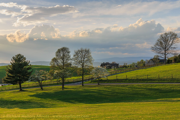 The freshly mowed grass glows a golden green in the last light of the day, the sun setting behind the mountains on the horizon.