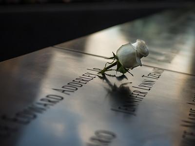 October 27, 2016 - Rose Memory