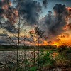 <b>Title - Sunrise</b> <i>- Herbert Zaifert</i>
