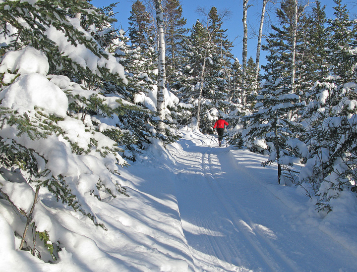 Skiing Fresh Snow 002<br /> <br /> With the snow hanging from the conifers it created a peaceful scene. All that beautiful snow created excellent ski and snowshoe conditions for Christmas Day.
