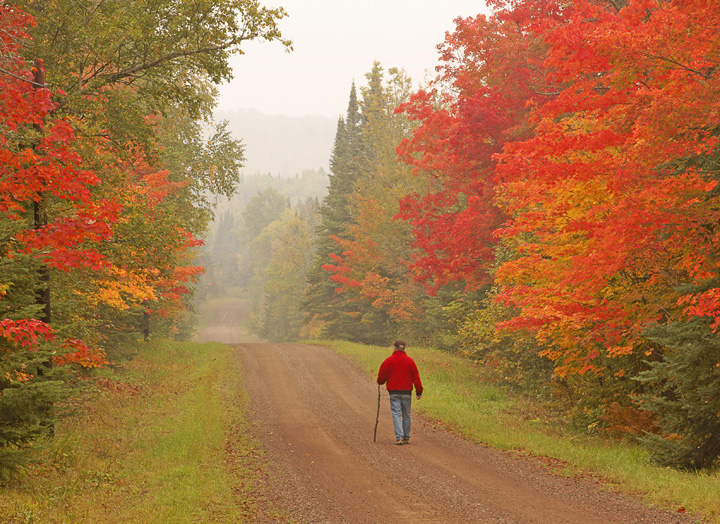 North Shore Country Road<br /> <br /> This year the colors are absolutely magic. The right combination of sunlight and rain produced some of most brilliant reds and brightest oranges.