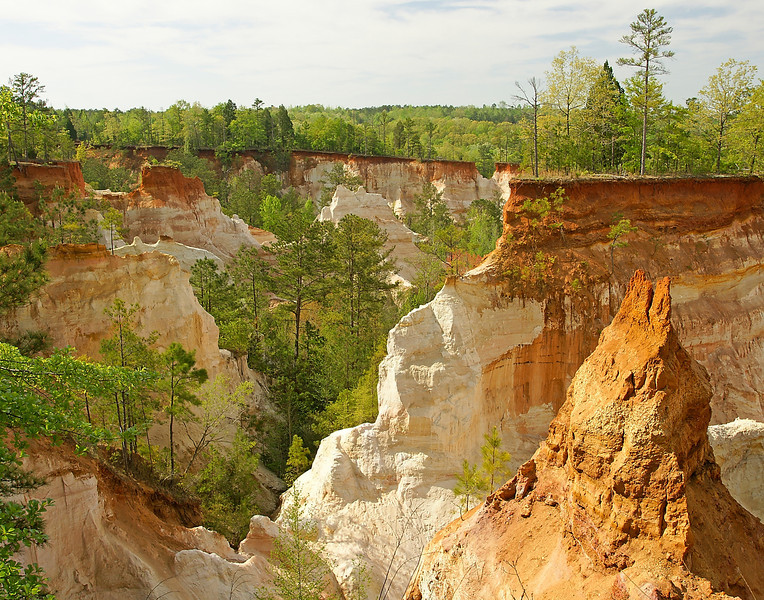 "Providence Canyon State Park<br /> <br /> We travelled to Providence Canyon State Park in southwest Georgia. We were amazed at the breathtaking colors of this ""Little Grand Canyon"". The pink, orange, red and purple hues of the soft canyon soil are remarkable."