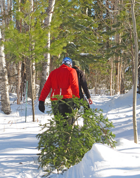 In Search of the Perfect Tree<br /> <br /> Before heading for home, Adam and Jordan searched for the perfect Christmas tree. We have so much to be thankful for this year. We pray that you had a fun time with family over the weekend.