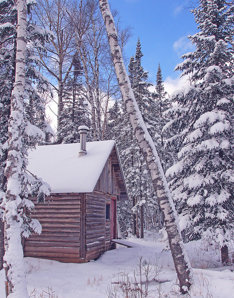 Northwoods Cabin<br /> <br /> Our neighbors have this beautiful little cabin in the woods that always calls to me when I am out snowshoeing.  The snow covered conifers mixed with the white bark of the birch trees make for a wonderful Minnesota winter scene.