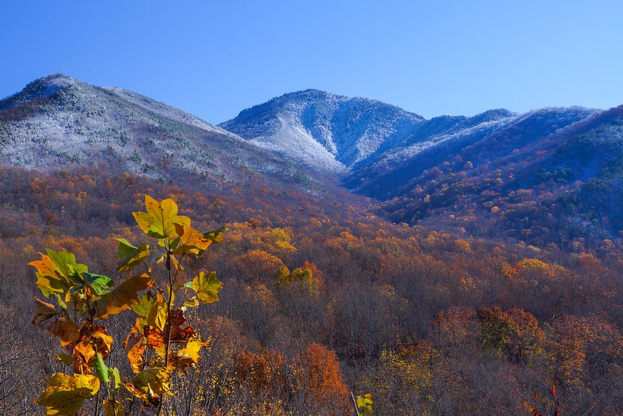 Smoky Mountains 001
