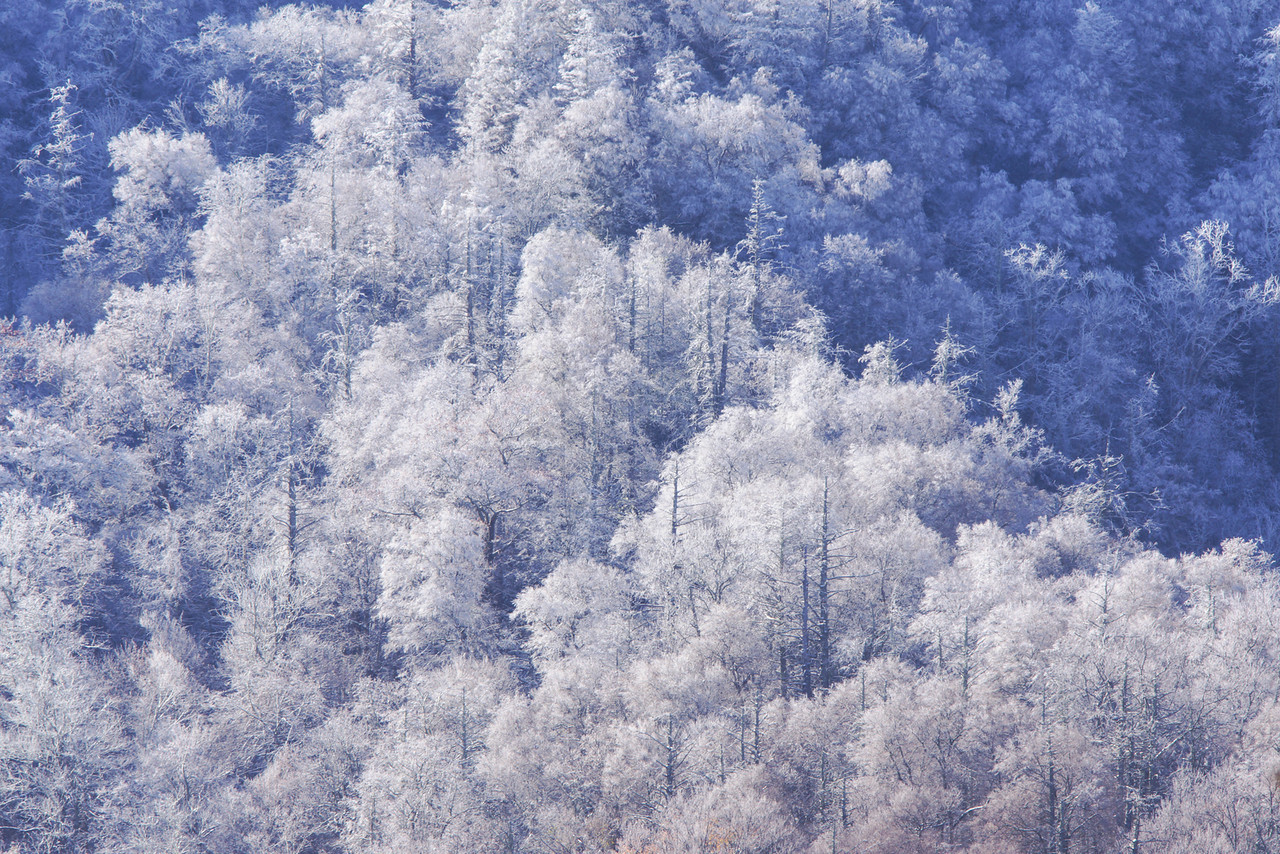Smoky Mountains 002