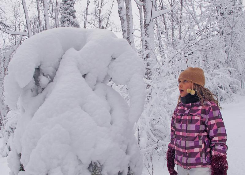 April Snowstorm 003