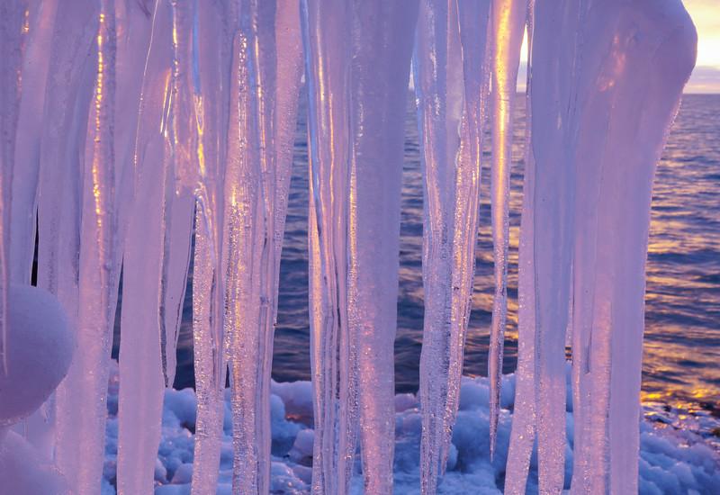 Ice Sculptures 004