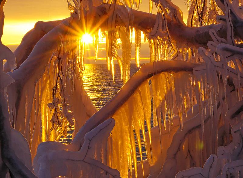 Ice Sculptures 005