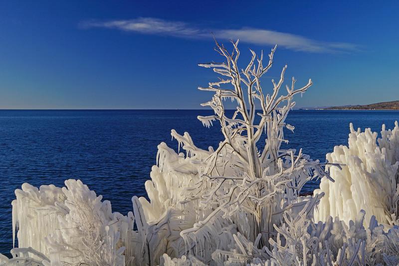 Ice Sculptures 002