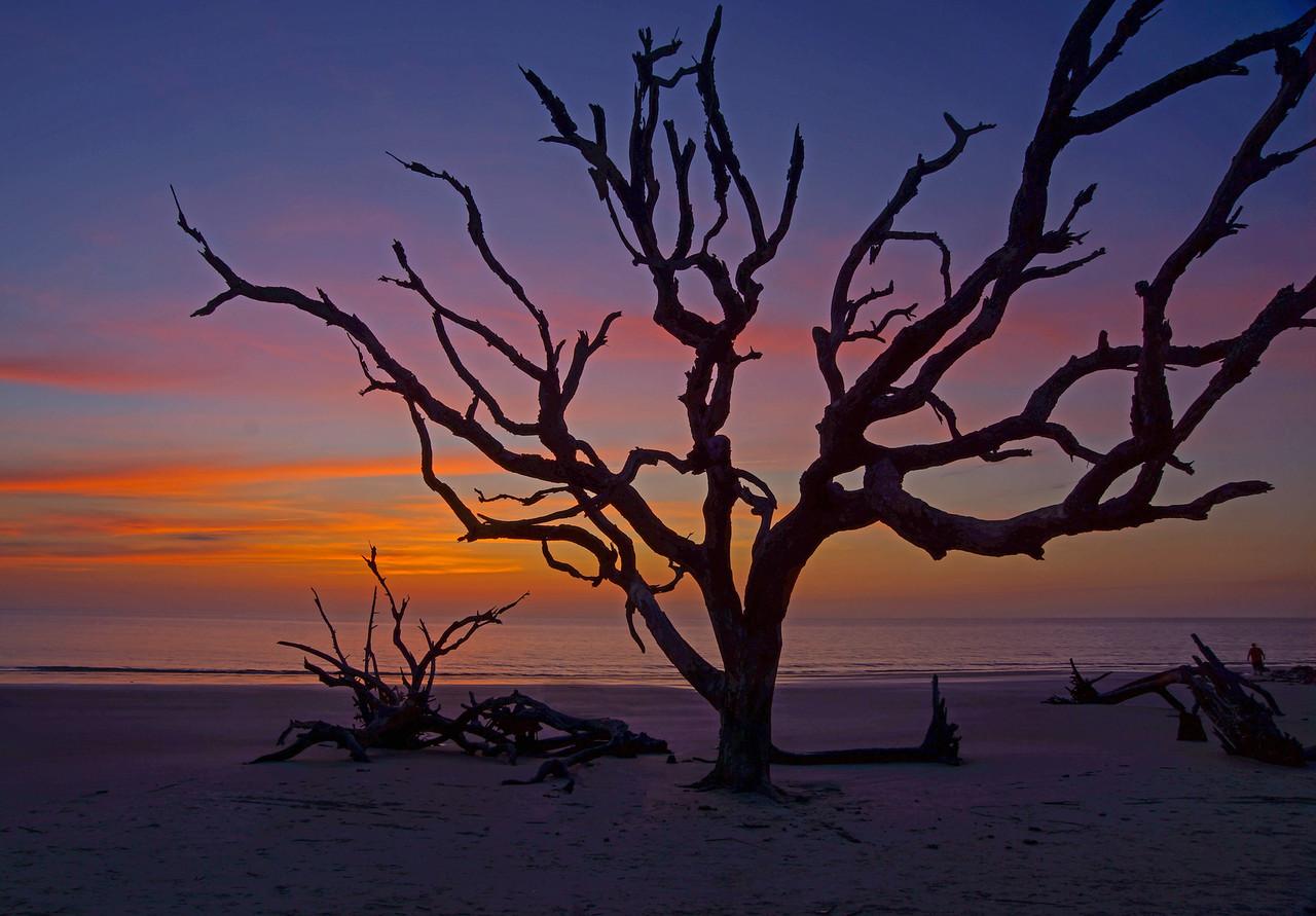 Jekyll Island 005