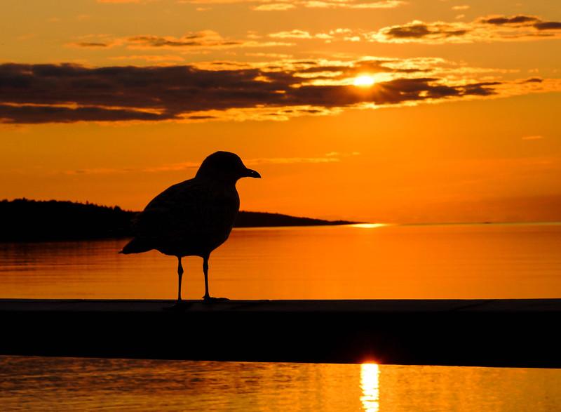Grand Marais Sunrise 003