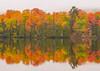Copper Harbor Maple Reflections