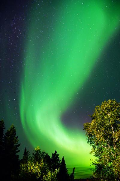 Fall Aurora 005
