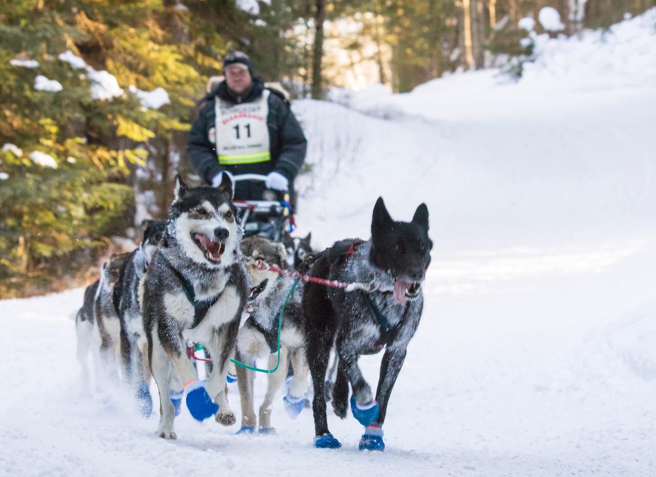 2016 John Beargrease Sled Dog Marathon 002