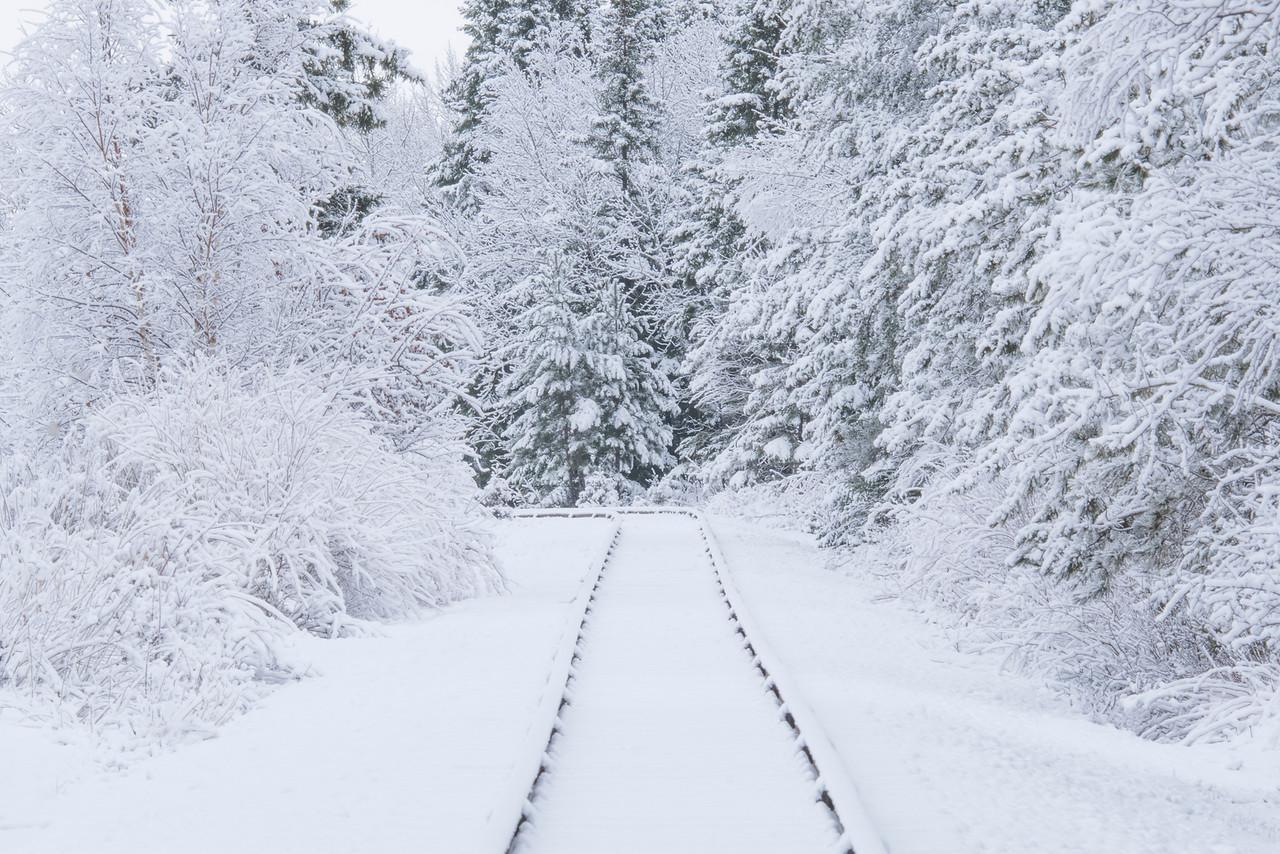 North Shore Railroad Tracks
