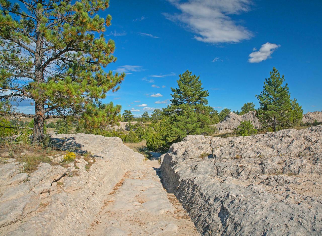 Oregon Trail Ruts Historic Site 001
