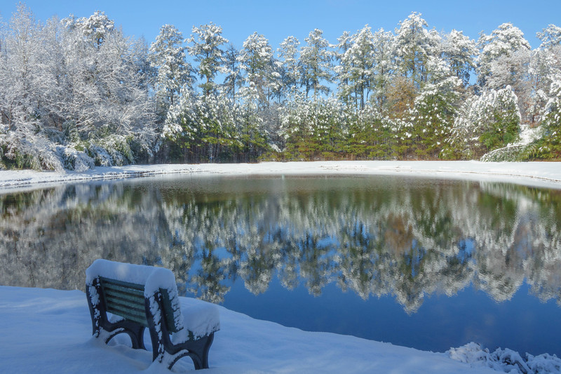 Georgia Snow 008