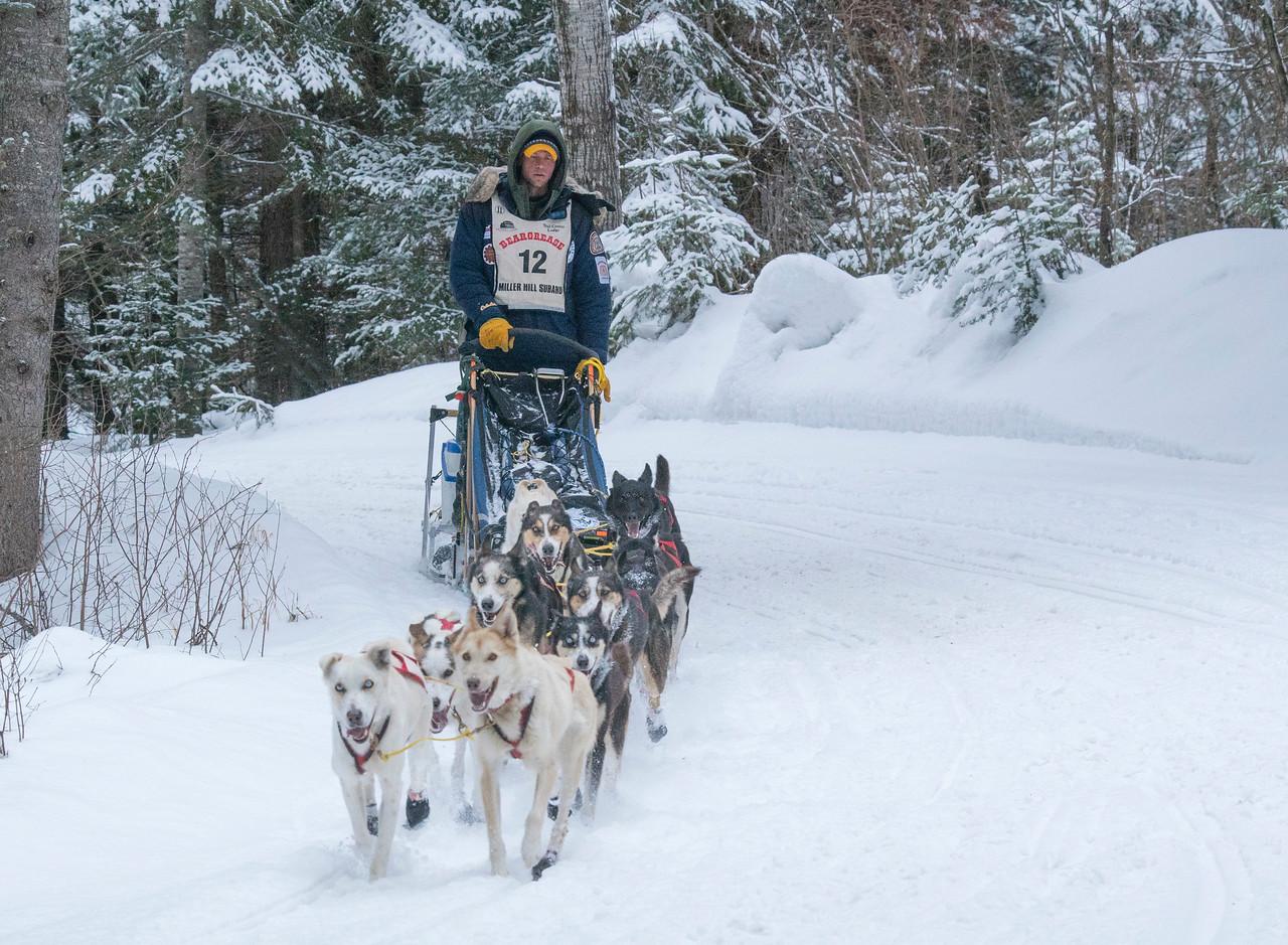 John Beargrease Sled Dog Marathon 009