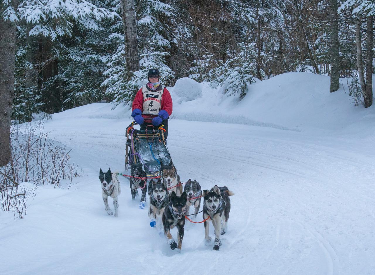 John Beargrease Sled Dog Marathon 008