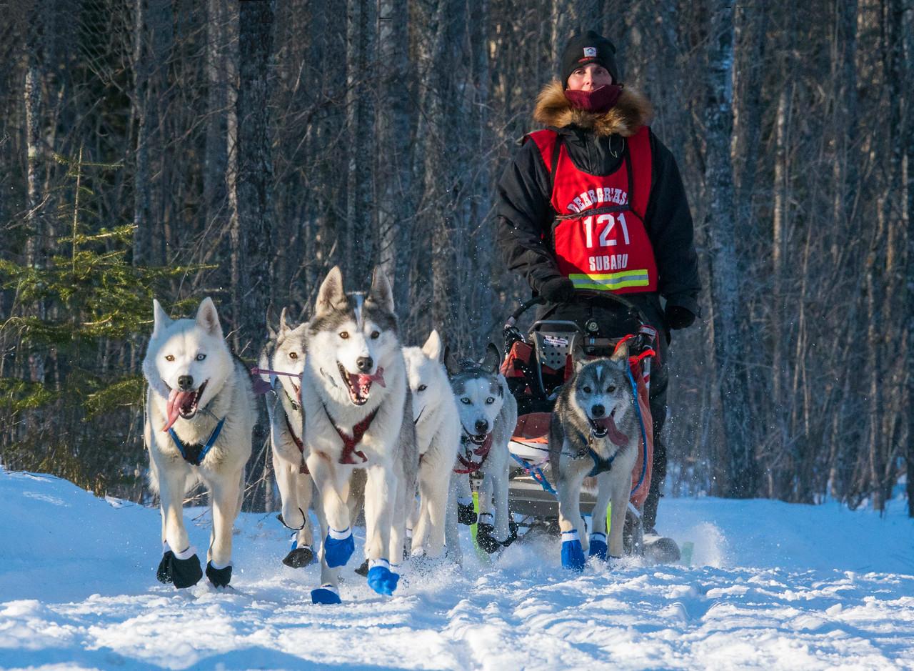 John Beargrease Sled Dog Marathon 002