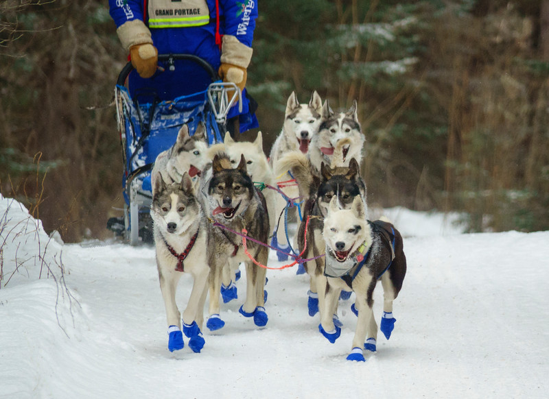 2018 John Beargrease Sled Dog Marathon 006