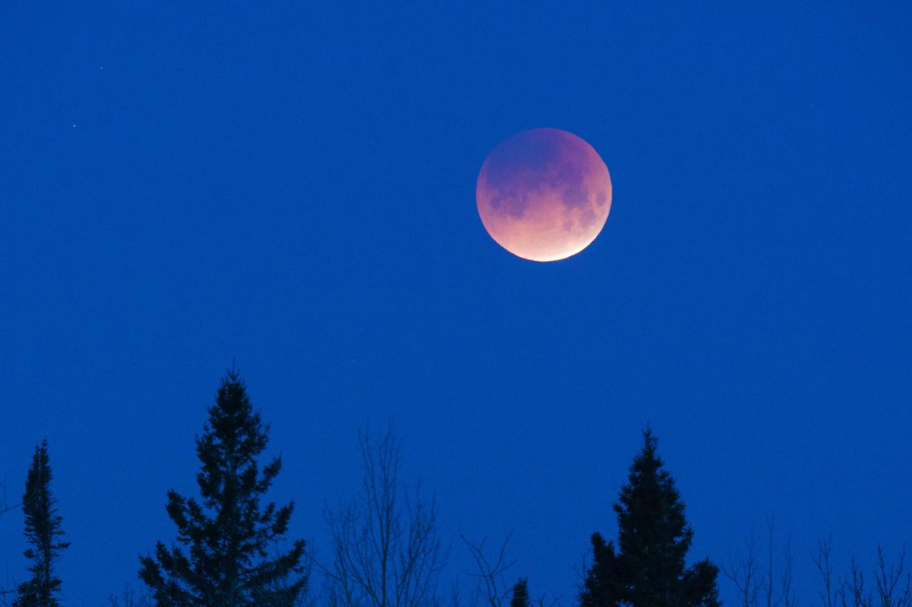 Racing Under the Blue Moon Lunar Eclipse
