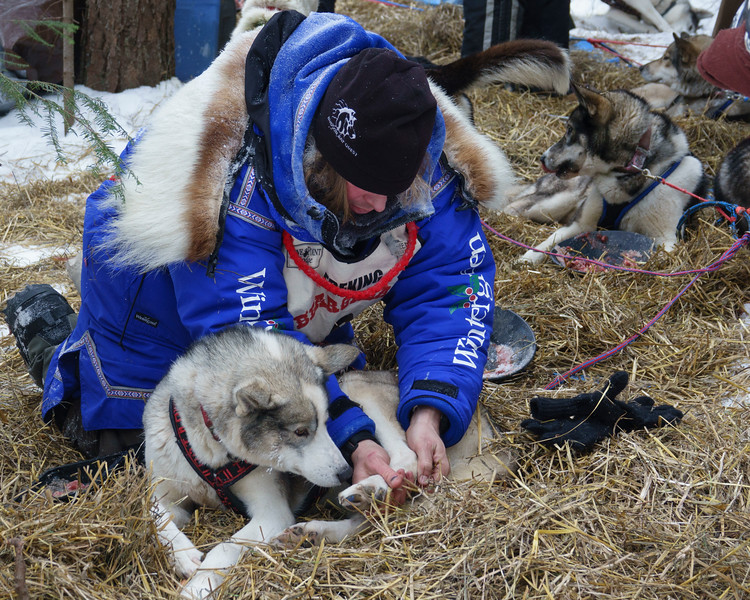 2018 John Beargrease Sled Dog Marathon 007