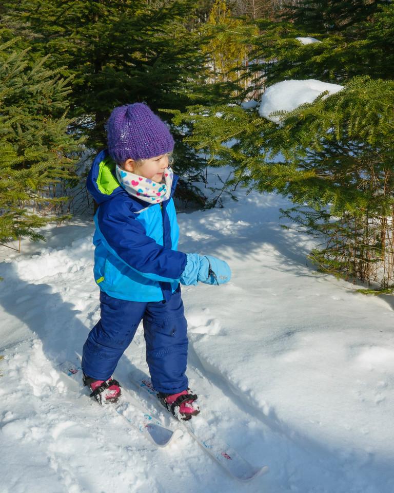 Skiing 001