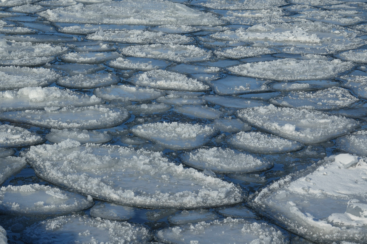Pancake Ice with Frost