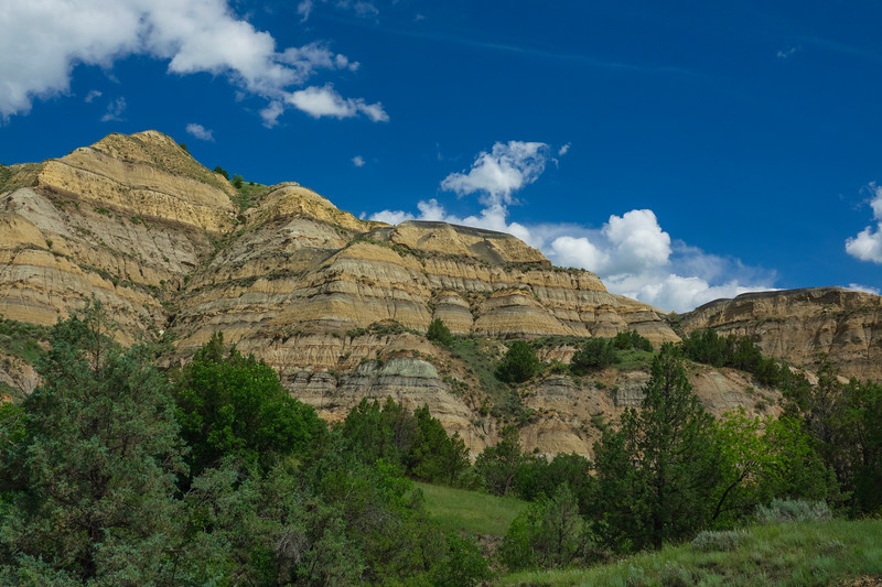 Theodore Roosevelt National Park 011