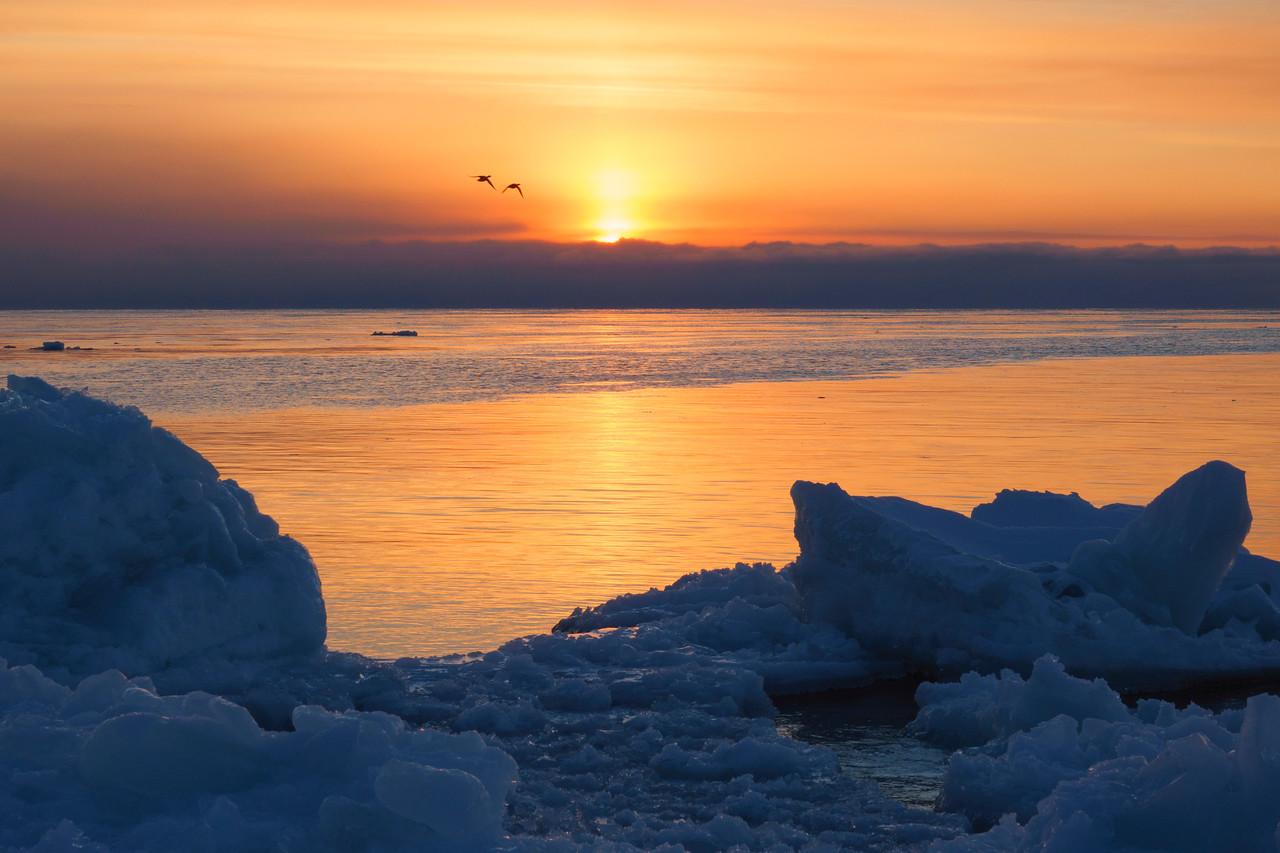 Melting Ice 004