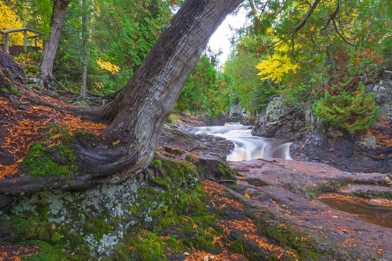 Cascade River State Park 004