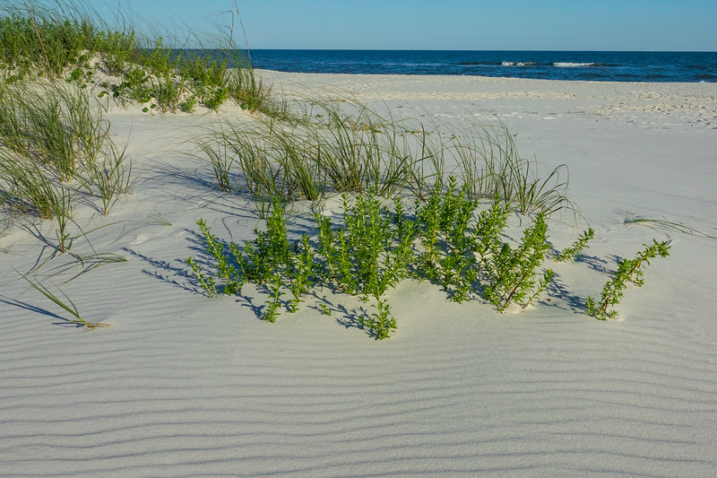 Gulf Island National Seashore 002