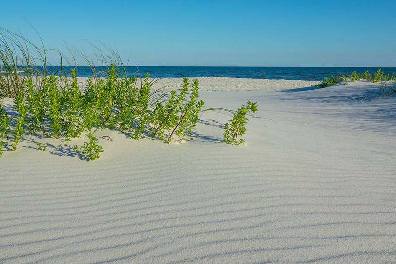 Gulf Island National Seashore 004