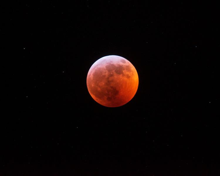 Wolf Moon 005