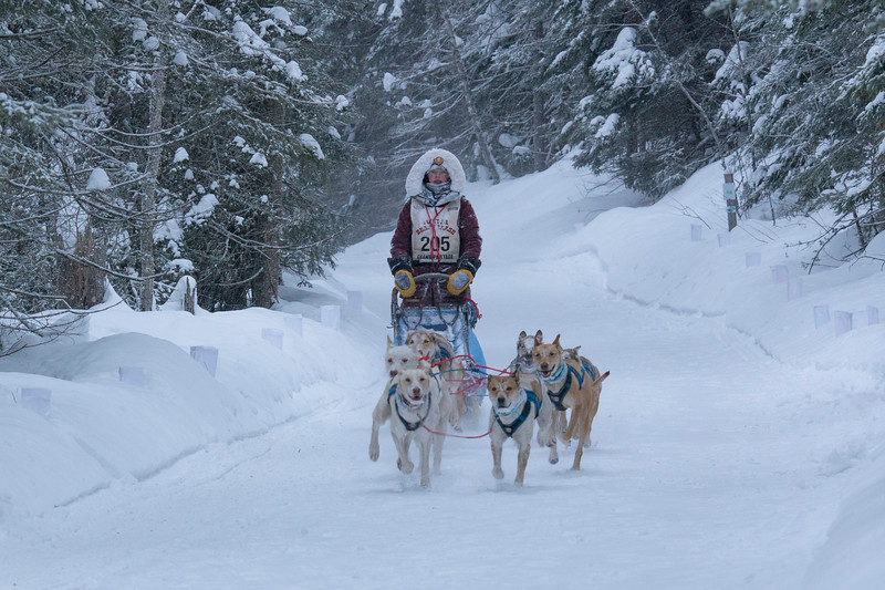 35th John Beargrease Sled Dog Marathon 007
