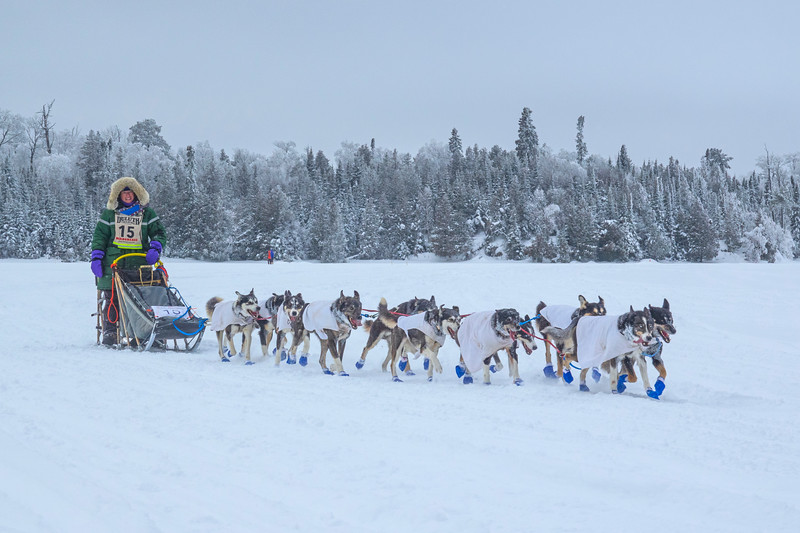 John Beargrease Sled Dog Marathon 005