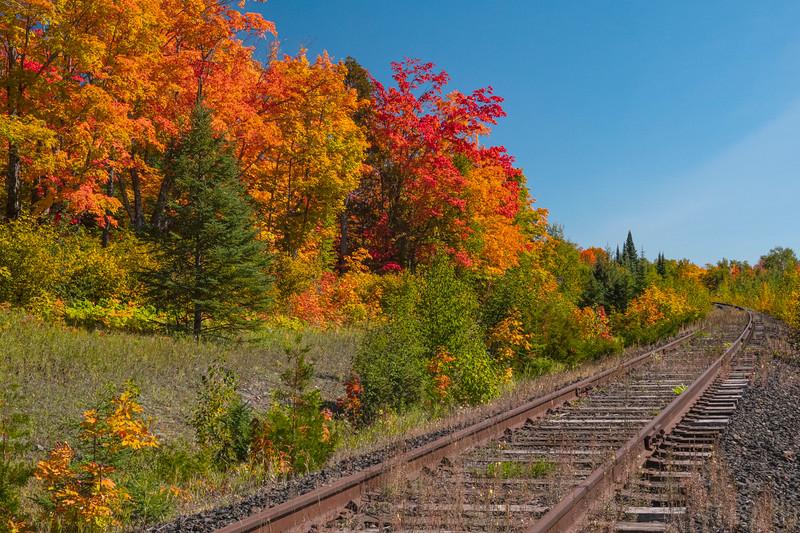 Fall Colors 005