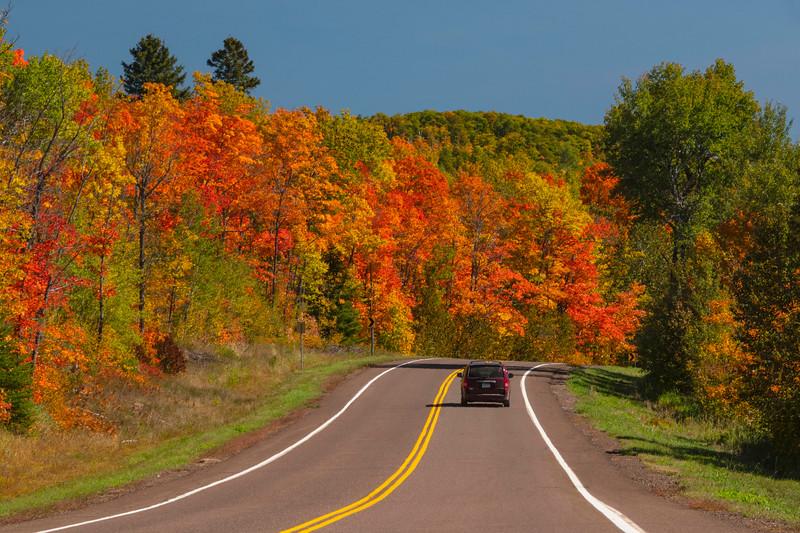 Fall Colors 003