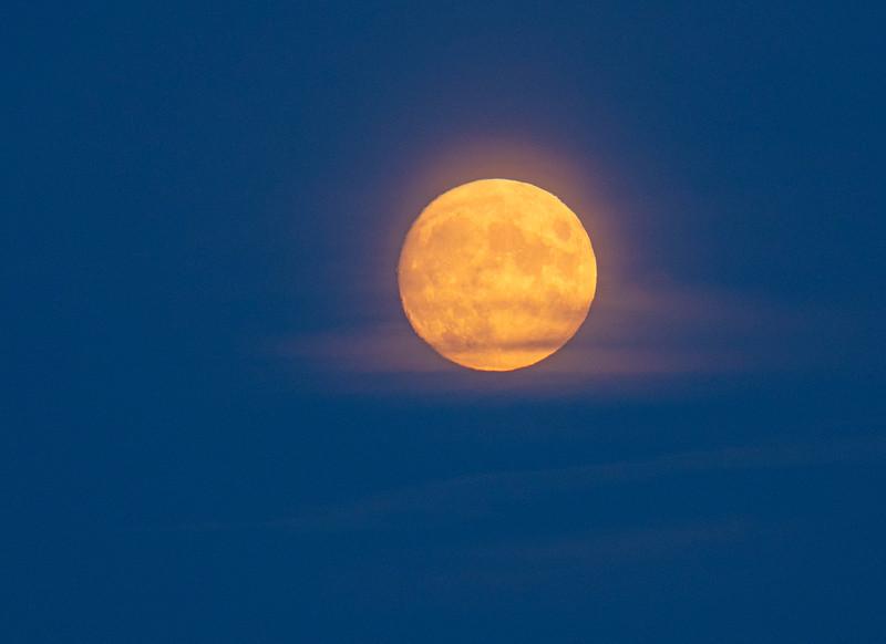 Harvest Moon 005
